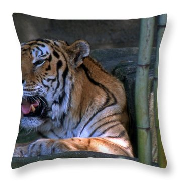Heavy Breathing Throw Pillow by Skip Willits