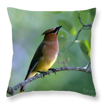 Hello Up There Throw Pillow by Inspired Nature Photography Fine Art Photography