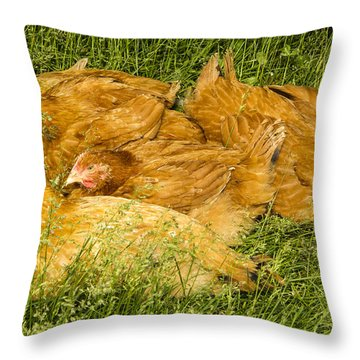 Hen Party Throw Pillow by Jean Noren