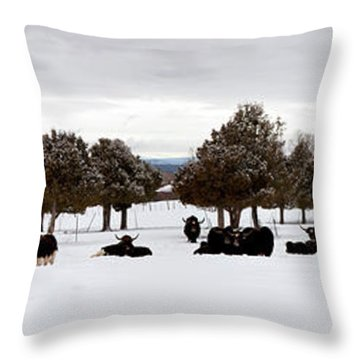 Herd Of Yaks Bos Grunniens On Snow Throw Pillow by Panoramic Images