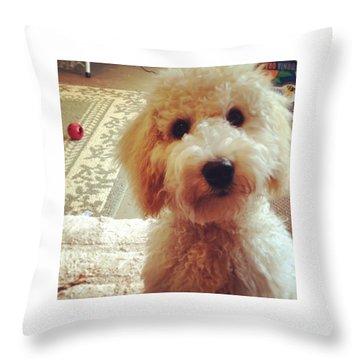 Doodledog Georgie Throw Pillow by Blenda Studio