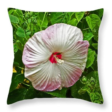 Hibiscus Throw Pillow by Aimee L Maher Photography and Art Visit ALMGallerydotcom