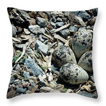 Hidden In Plain Sight Throw Pillow by Rhonda Barrett