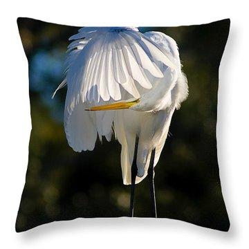 Hidden Throw Pillow by Joan McCool