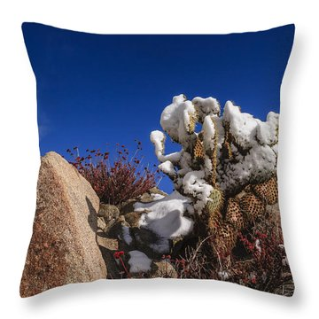 High Desert Snow 2 Throw Pillow by Scott Campbell