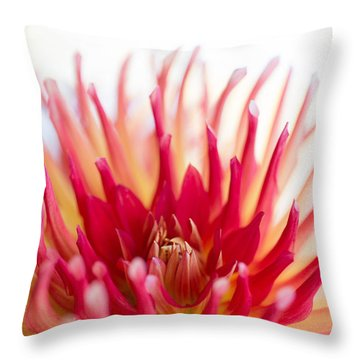 High Key Beauty Throw Pillow by Beve Brown-Clark Photography