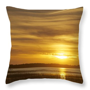 High Tide In The Marsh Throw Pillow by Phill Doherty