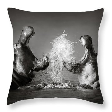 Hippo's Fighting Throw Pillow by Johan Swanepoel