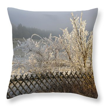 Hoarfrost In Winter Throw Pillow by Matthias Hauser