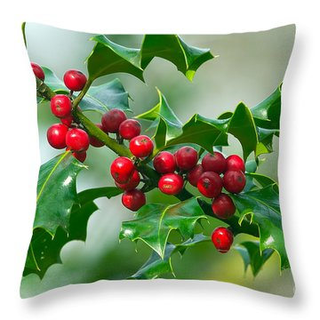 Holly Berries Throw Pillow by Sharon Talson