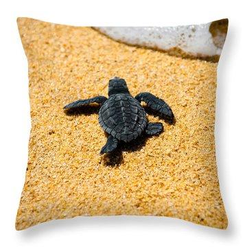 Home Throw Pillow by Sebastian Musial