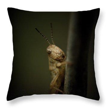 hop Throw Pillow by Shane Holsclaw