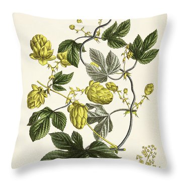 Hop Vine From The Young Landsman Throw Pillow by Matthias Trentsensky