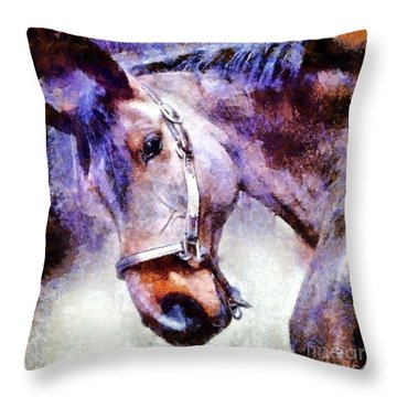 Horse I Will Follow You Throw Pillow by Janine Riley