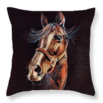 Horse Portrait  Throw Pillow by Daliana Pacuraru