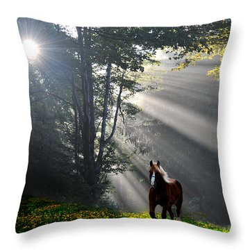 Horse Running In Dandelion Field With Streaming Sunlight Throw Pillow by Dan Friend