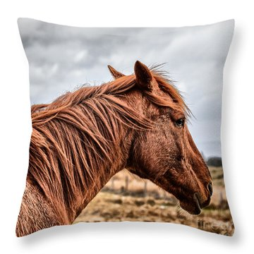 Horsey Horsey Throw Pillow by John Farnan
