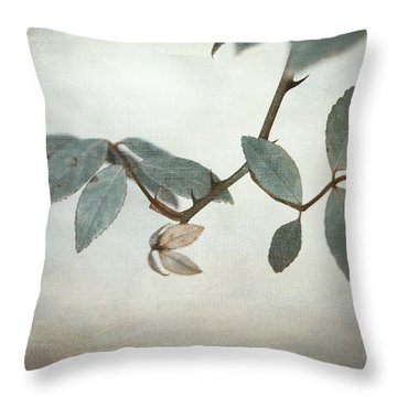 How Delicate This Balance Throw Pillow by Laurie Search