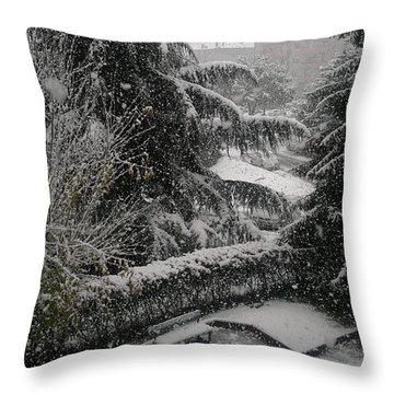 Huge Snowflakes Throw Pillow by Giuseppe Epifani