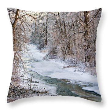 Humber River Winter Throw Pillow by Steve Harrington
