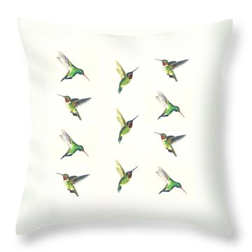 Hummingbirds Number 2 Throw Pillow by Michael Vigliotti