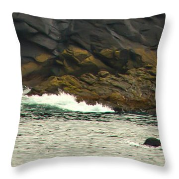 Humpback Whale Throw Pillow by Debra  Miller