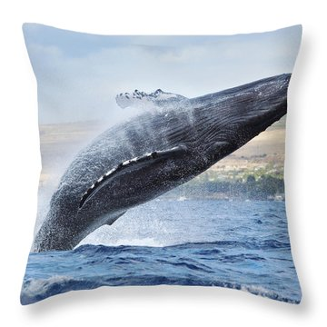 Humpback Whale Throw Pillow by M Swiet Productions