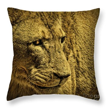 Hunter Throw Pillow by Andrew Paranavitana