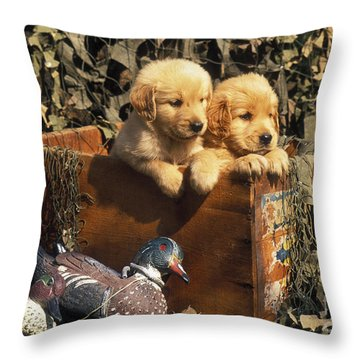 Hunting Buddies - Fs000130 Throw Pillow by Daniel Dempster