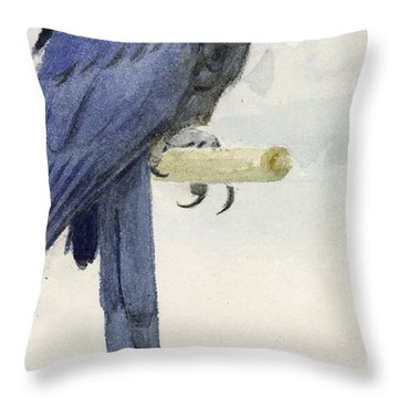 Hyacinth Macaw Throw Pillow by Henry Stacey Marks