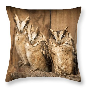 I Am Almost Awake Throw Pillow by Anne Gilbert