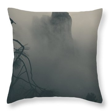 I Can Barely Remember Throw Pillow by Laurie Search