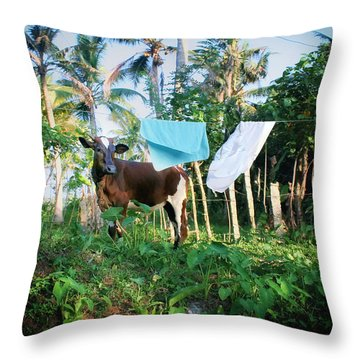 I Got A Fever And The Only Prescription Is More Cowbell Throw Pillow by A Rey