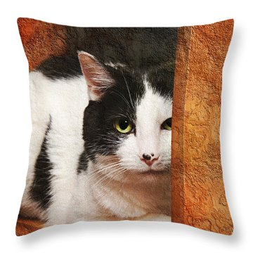 I Have My Eye On You Throw Pillow by Andee Design
