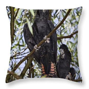 I Say Old Chap Throw Pillow by Douglas Barnard