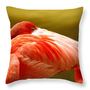 I See You Throw Pillow by Cheryl Young