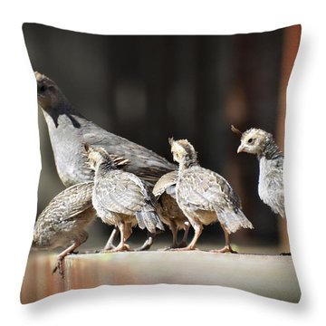 I Think I Can Fly  Throw Pillow by Saija  Lehtonen