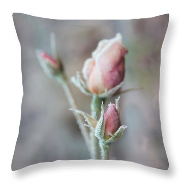 Ice Princess Pink Rose Bud Throw Pillow by Jennie Marie Schell