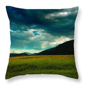 Idaho Beauty Throw Pillow by Jeff Swan