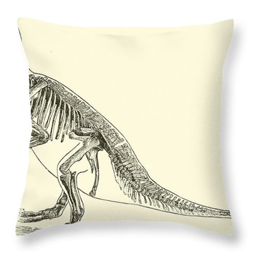 Iguanodon Throw Pillow by English School