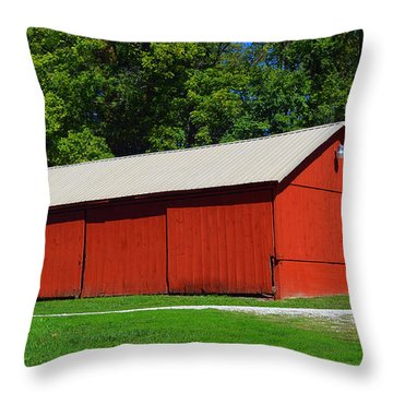 Illinois Red Barn Throw Pillow by Luther   Fine Art