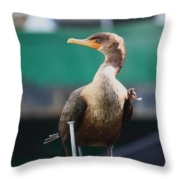I'm Looking At You Throw Pillow by Kym Backland
