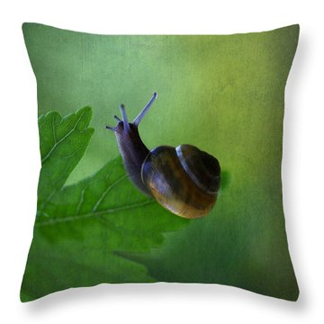 I'm Not So Fast Throw Pillow by Annie  Snel