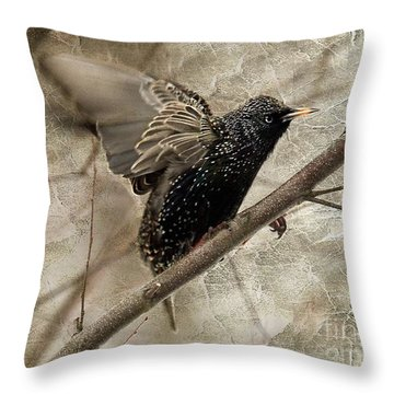 I'm Outta Here Throw Pillow by Lois Bryan