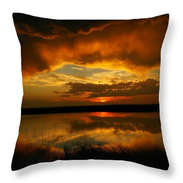 In All His Glory Throw Pillow by Jeff Swan