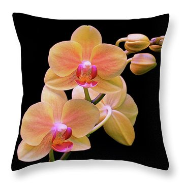 In Bloom Throw Pillow by Rona Black
