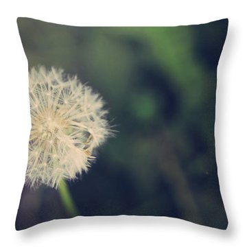In The Afterglow Throw Pillow by Laurie Search