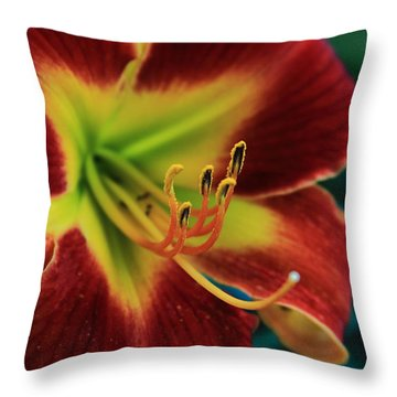 In The Ant's Eye Throw Pillow by Reid Callaway