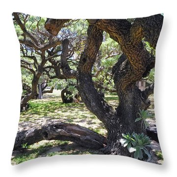 In The Depth Of Enchanting Forest Iv Throw Pillow by Jenny Rainbow