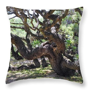In The Depth Of Enchanting Forest Vi Throw Pillow by Jenny Rainbow